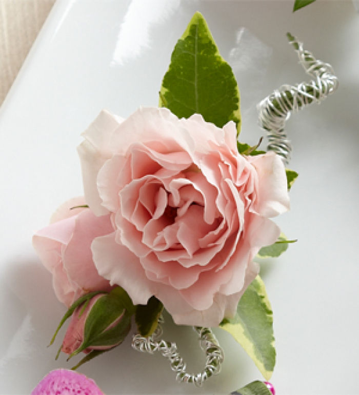 Bout: Pink Spray Rose Boutonniere