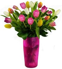 Fresh: Vase of Tulips